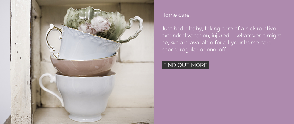 Home care. Just had a baby, taking care of a sick relative, extended vacation, injured. . . whatever it might be, we are available for all your home care needs, regular or one-off.